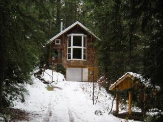 Snowline Cabin #25 - A great country-style cabin with a hot tub! Pet friendly, with WIFI. - Glacier vacation rentals