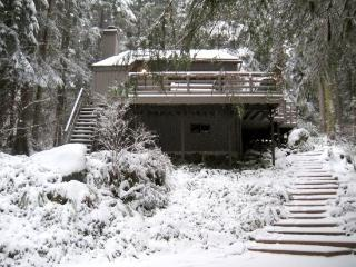 Snowline Cabin #26 - A great 2-story cabin with a private hot tub! - Glacier vacation rentals