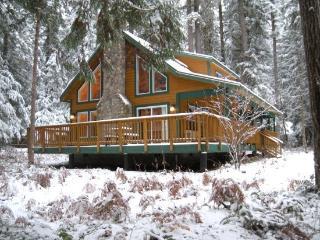 Snowline cabin #78 - 3 bedrooms, 2 baths - hot tub! Pet Friendly! - Glacier vacation rentals