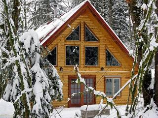 Glacier Springs Cabin #21 - This family home says Cabin in the Country! - Philo vacation rentals