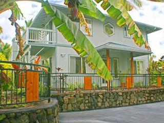 4 bedroom House with Internet Access in Kapoho - Kapoho vacation rentals