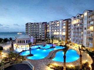 Divi Aruba Phoenix 7 Days (Timeshare week 46 ) - Sierra Nevada vacation rentals