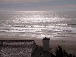 Spectacular Views! Ocean Steps Away, Luxury - Pismo Beach vacation rentals