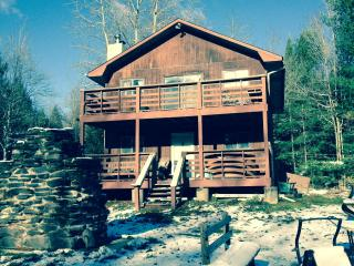 Hunter Mountain House - East Jewett vacation rentals