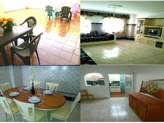 Apartment 3 bedroom with Terrace, Tenerife - Las Chafiras vacation rentals