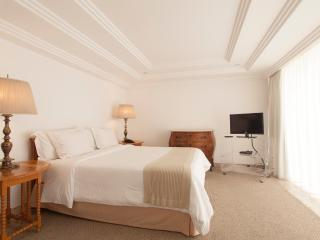 Romantic 1 bedroom Sao Paulo Apartment with A/C - Sao Paulo vacation rentals