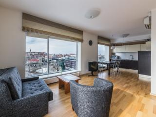 Deluxe Studio with View – Viru Square 6 - Tallinn vacation rentals