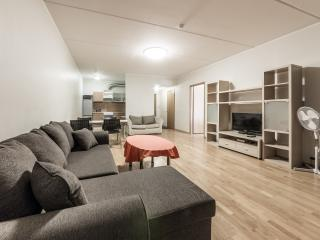 1 BDR Apartment with Balcony – Narva Street 5 - Tallinn vacation rentals