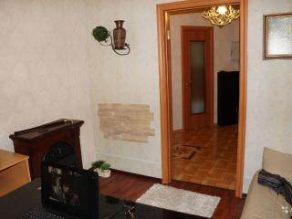 2 bedroom apt includes an office - North-West Russia vacation rentals