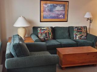Cozy 1 bedroom with beautiful views - Whistler vacation rentals