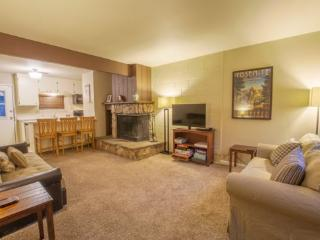 2 Bedroom Townhome Near Heavenly and Lake Tahoe - South Lake Tahoe vacation rentals
