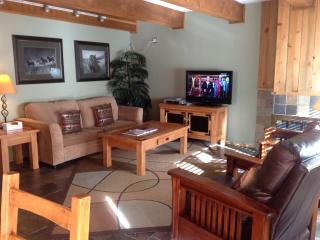 By Gondola Lionshead 2bd/2ba Low Rates Gold-Rated - Vail vacation rentals