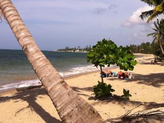 Villas del Mar Beach Resort- Beach,Pools,Private and Family Vacation - Loiza vacation rentals
