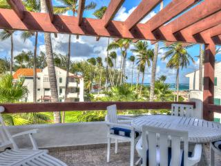 Beautiful Beachfront 2-BDR Apartment S-D301 - Bavaro vacation rentals