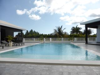 This elevated villa is in the heart of the community, but hovers over all the rest affording spacious privacy. The unground jacu - Cabarete vacation rentals