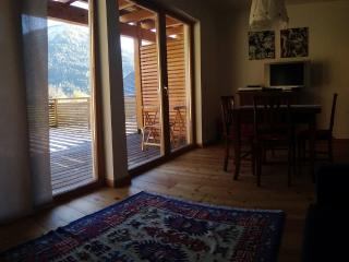 Apartment for 5 with views in Bad Kleinkirchheim - Carinthia vacation rentals