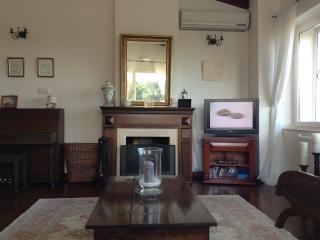 Wonderfull Aegean House - Narlidere vacation rentals