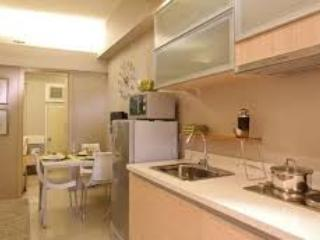 NEW CONDO UNIT, FULLY FURNISHED READY TO OCCUPY - Las Pinas vacation rentals