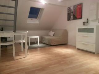 le lys: meublé avec mezzanine wifi compris - Strasbourg vacation rentals