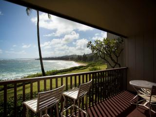 Wailua Bay View  River & Oceanfront Condo * KAUA'I - Kapaa vacation rentals