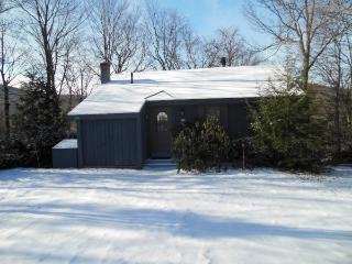 4BR Ski House Off Access Road With Outdoor Hot Tub - Killington vacation rentals