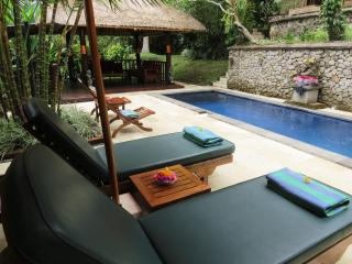 Gorgeous! Villa Teras Sungai 2 bdrm Ubud Center - Ubud vacation rentals