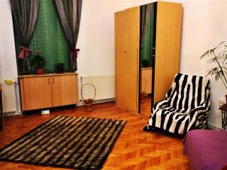 Super Central, Chic Apartment :) - Cluj-Napoca vacation rentals