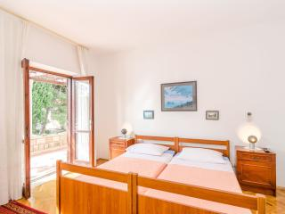 Apartment Vujovic with terrace - Dubrovnik vacation rentals