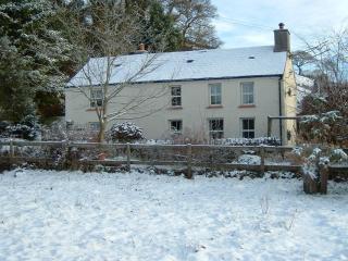 Bryn Marlais Cottage, Brechfa - Carmarthen vacation rentals