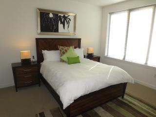 Lux 2BR Apt Near University w/WiFi - Stamford vacation rentals
