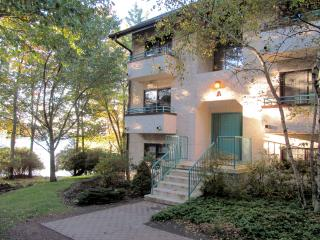 Perfect Condo with A/C and Tennis Court - Lake Harmony vacation rentals