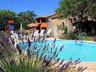 Authentic Stone Villa in Istria with a Beautiful Pool and Garden - Neftekumsk vacation rentals