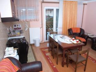 Apartmani Šumski Raj Divčibare - Serbia vacation rentals
