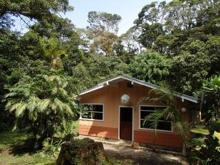 Cozy 3 bedroom House in Monteverde Cloud Forest Reserve - Monteverde Cloud Forest Reserve vacation rentals