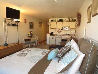 Cedar Lodge 204 - Frisco vacation rentals