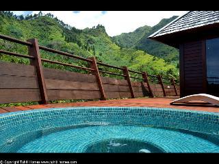 Villa Honu Nui - Moorea - Papetoai vacation rentals
