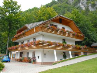 Superior Apartment With 3 Balconies - Bled vacation rentals
