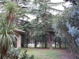 Nice Villa with Deck and Internet Access - Ascoli Piceno vacation rentals