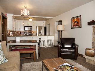 Bronze Tree 503 - Steamboat Springs vacation rentals