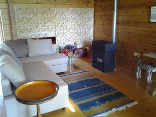 Comfortable 1 bedroom Condo in El Paso with Internet Access - El Paso vacation rentals