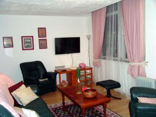 Comfortable Condo with Internet Access and Cleaning Service - Dundee vacation rentals