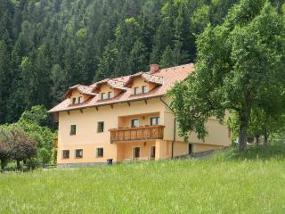 Beautiful 4 bedroom Apartment in Ljubno - Ljubno vacation rentals