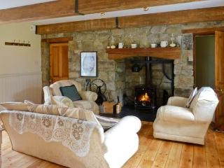 3 bedroom Cottage with Dishwasher in Ballymahon - Ballymahon vacation rentals