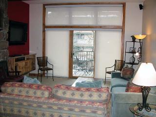 BC West 20 w/ FREE Skier Shuttle - Avon vacation rentals