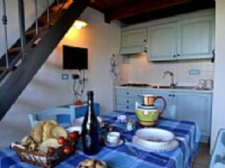 Casa Viola E - Cisternino vacation rentals