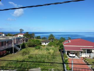 Convenient 2 bedroom Roseau Condo with Internet Access - Roseau vacation rentals