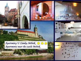 Apartments near the castle Melnik - near Prague - Bohemia vacation rentals