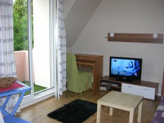 Nice Studio with Internet Access and Washing Machine - Erstein vacation rentals