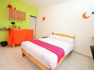 STUDIO 4 BLOCKS FROM THE BEACH 600USD PER MONTH!! - Playa del Carmen vacation rentals