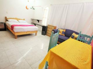 STUDIO 4 BLOCKS FROM THE BEACH 800USD PER MONTH!! - Playa del Carmen vacation rentals